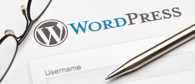 wordpress plugin guide