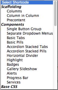 Options in Respondo Shortcodes