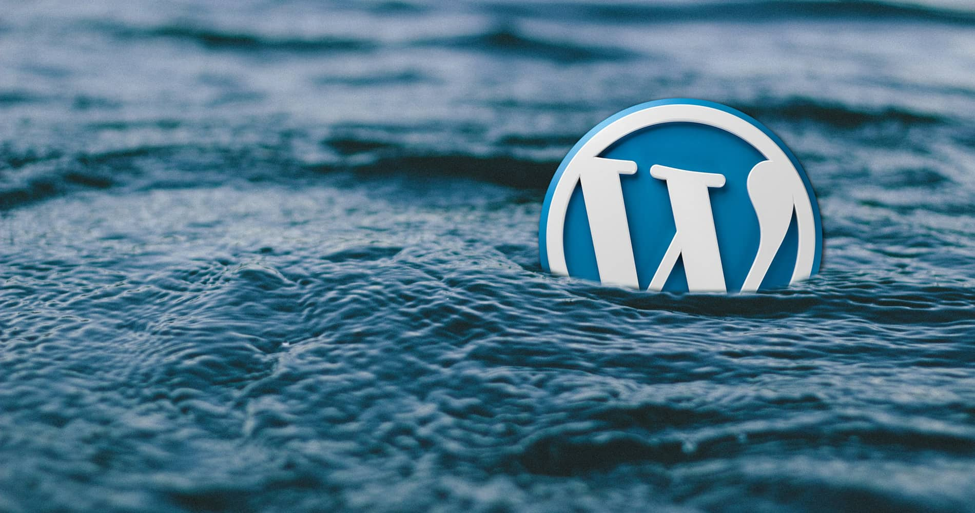 The WordPress Logo Floating in Water