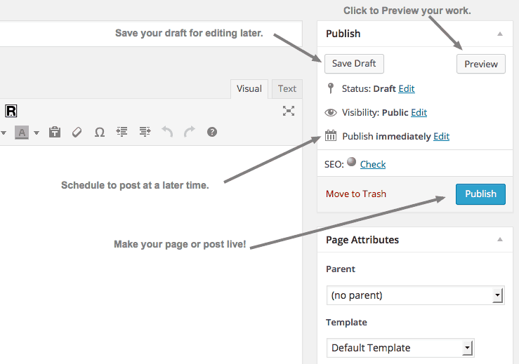 Publishing Option in WordPress