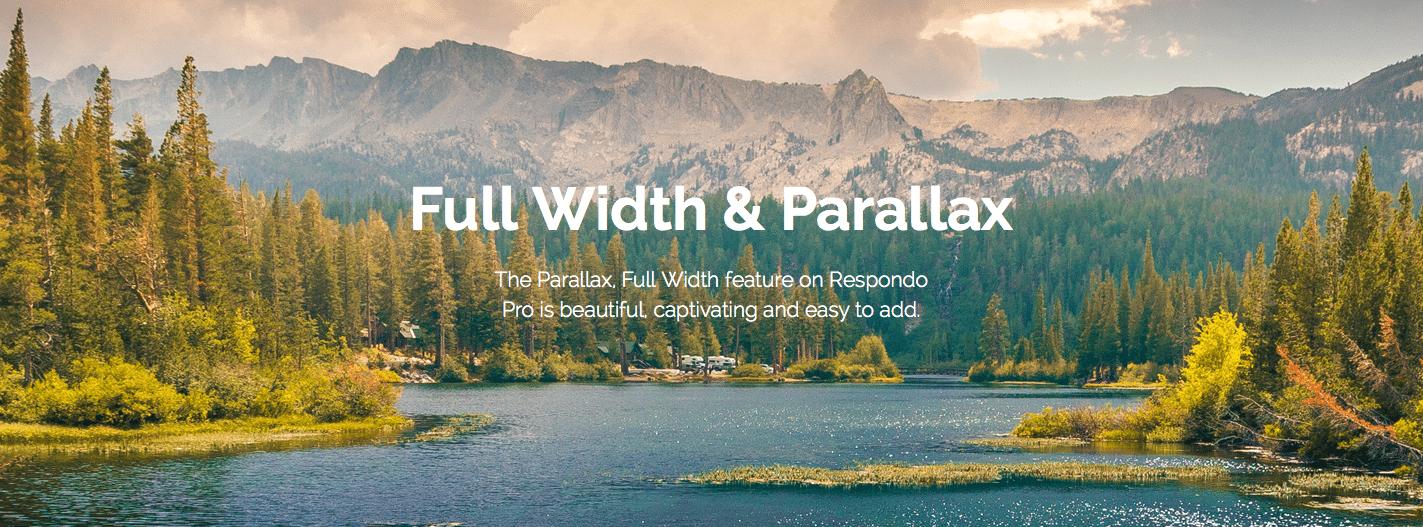 Full Width Parallax