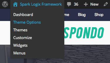 Access Theme Options in WordPress