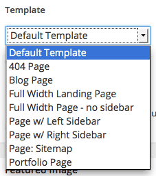 Template Options in Respondo WordPress